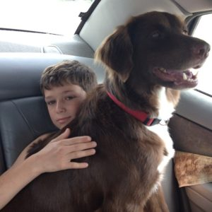 Pets and People: Responsible Dog Ownership @ T.R.E.E. House Children's Museum   Alexandria   Louisiana   United States